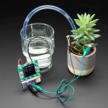 Adafruit Bonsai Buckaroo, micro:bit & CLUE Plant Care Helper